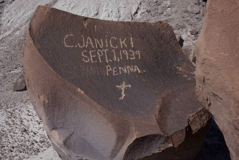 C. Janicki